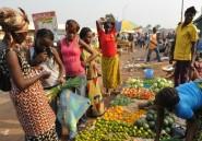Centrafrique: Le Séléka s'approche de Bangui