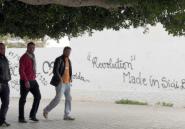 Verbes et expressions du printemps arabe