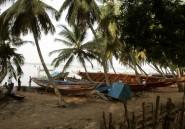 La mangrove, troisième religion de la Casamance