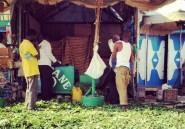 Le khat, la drogue somalienne qui fait planer les Anglais