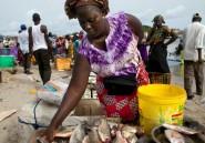 Les businesswomen les plus puissantes de l'Afrique francophone