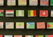Cinquantenaire de l'Union africaine: les rêves déçus du panafricanisme
