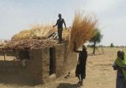 Tallamabrahim, la petite oasis des déplacés nigérians au Cameroun