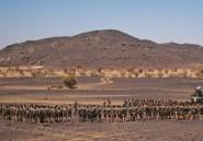 La France a trop tendance à oublier ses alliés dans la guerre au Mali