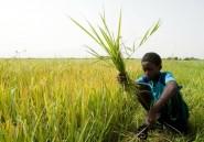 Il ne faut pas avoir peur d'investir dans le Sahel