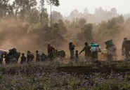 Le Rwanda de nouveau accusé d'alimenter la guerre à Goma