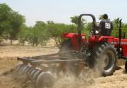 Les fermiers nigérians «likent» l'agriculture 2.0