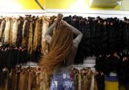 Ces cheveux qui viennent de Chine