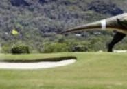 Un Australien crée un parc à thème de robots géants de dinosaures