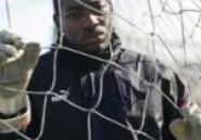 Charleroi : P. Mandanda rempile jusqu'en 2017