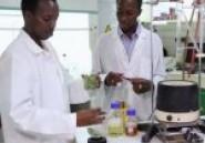 Des étudiants africains inventent un savon contre le paludisme