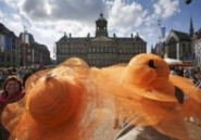"""Bières, sex-toys et cannabis en l'honneur du """"prince pils"""" des Pays-Bas"""