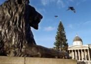 GB : mini-bataille de Trafalgar autour d'une statue de coq franco-allemand