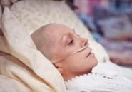 Différents cancers ont des similarités génétiques, confirment deux études