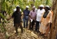Abengourou / Maurice Sawadogo à propos de la réforme de la filière café cacao : ''Cette campagne a été moins contraignante'' (L'intelligent d'Abidjan)