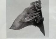 Sculpture :  Qui a volé l'œuvre de l'avocat Bara Diokhané ?