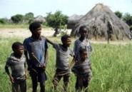 Le Botswana nie vouloir expulser des Bushmen pour créer un parc naturel