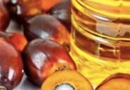Alimentation: Une huile de palme cancérigène distribuée en Tunisie depuis 10 ans?