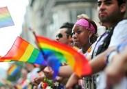 Le Pakistan serait le leader mondial en volume de recherche du porno gay