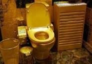 Kanye West et sa compagne se payent des toilettes en or massif !