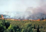 Incendies de forêt près de Tétouan