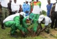 Reboisement tous azimuts au Faso : Attention aux opérations de blanchiment !