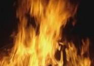 Un incendie détruit 20 hectares de forets à Hawaria et un autre en détruit 90 à Zaghouan