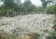 Collecte engagée de déchets plastiques:  dans 5 000 ménages
