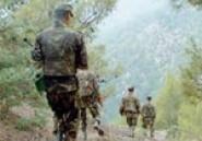 Ratissages sécuritaires dans les montagnes et forets de Nabeul