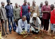 53è anniversaire de l'indépendance du Burkina Faso : LA BELLE TRADITION DE PLANTER DES ARBRES