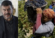 Affaire des Vignerons de Carthage : L'argent du vin serait-il halal ?