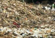 Le gaspillage de nourriture coûte 750 milliards de USD par an (FAO)
