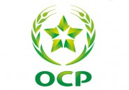 OCP rachète 50 % du capital de