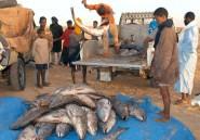 Mauritanie: amendement