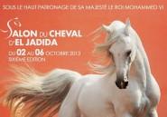 Vif succès du Salon du Cheval d'El Jadida