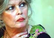 """Revue de presse. Aïd el-Kébir : Brigitte Bardot dénonce une """"coutume barbare, sanglante et écoeurante"""""""