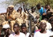 Darfour: au moins 460.000 personnes déplacées par les violences en 2013