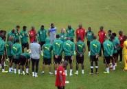 Mondial-2014: les cinq mêmes pays africains qu'en 2010?