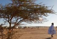 Sahara Occidental, la terre de toutes les discordes