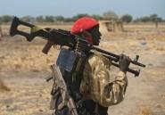 Le sommet de l'Union africaine centré sur les crises au Soudan du Sud et en Centrafrique