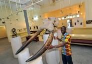 Côte d'Ivoire: ex-musée de qualité recherche financement désespérément