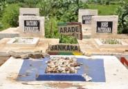 Burkina Faso: la justice se déclare incompétente sur l'exhumation de Sankara