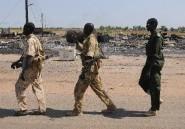 Soudan du Sud: l'armée reprend aux rebelles la ville pétrolifère de Bentiu
