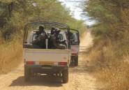 Cameroun: les 10 Chinois enlevés probablement emmenés au Nigeria