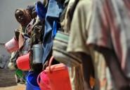 La FAO réclame une aide d'urgence pour la Somalie