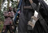 RDC: les chefs de la société civile, opposés au cantonnement de rebelles rwandais, libérés