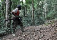 """RDC: Kinshasa veut """"donner une chance"""" au désarmement des rebelles rwandais"""