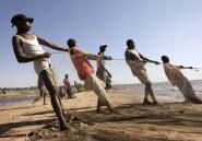 La mort annoncée du chambo, poisson mythique du lac Malawi