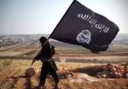 Il y aurait environ 2.400 combattants tunisiens en Syrie