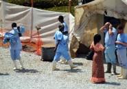 """Ebola: l'OMS veut des """"mesures drastiques"""" et convoque une réunion avec 11 pays"""